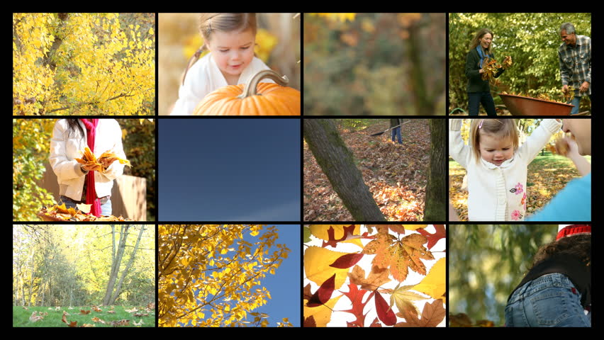Fall season montage | Shutterstock HD Video #4780073