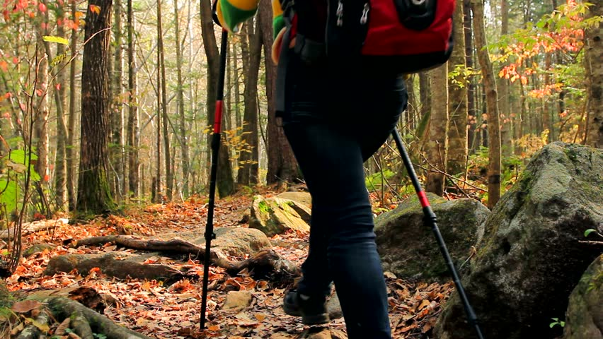 Young tourist woman hikes away, through thick forest