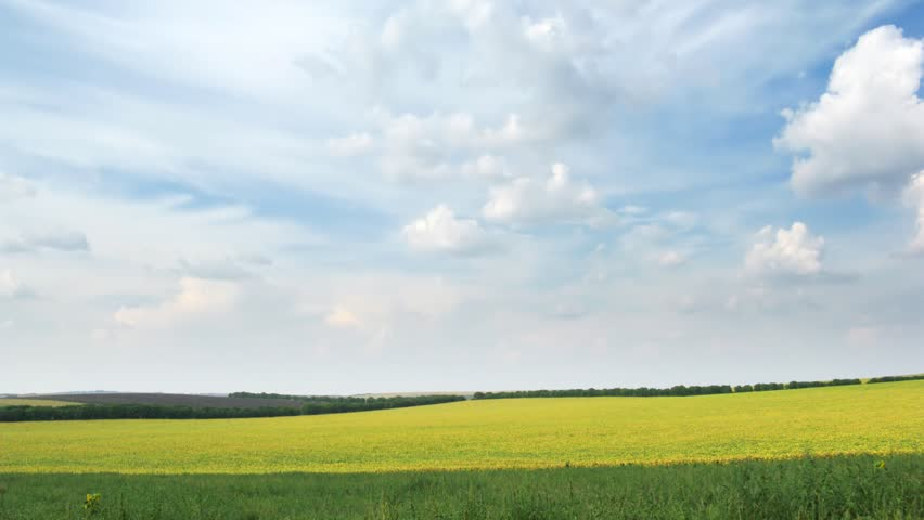 fields and sky. time lapse HD