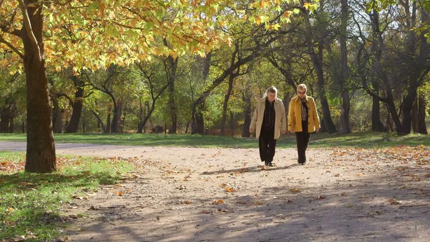 Two senior women strolling in the autumn city park, talking