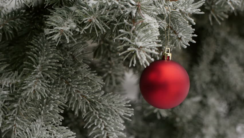 Red Christmas Ball On A Fir Tree Branch With Snow Stock Footage ...