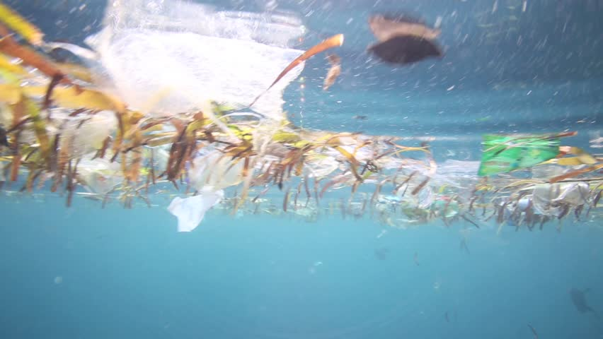Plastic bags and other garbage floating underwater over fragile coral reef in Bunaken Island, Sulawesi