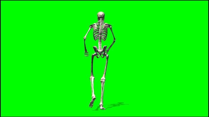 Skeleton Walking Rage Seperated Stock Footage Video 100 Royalty