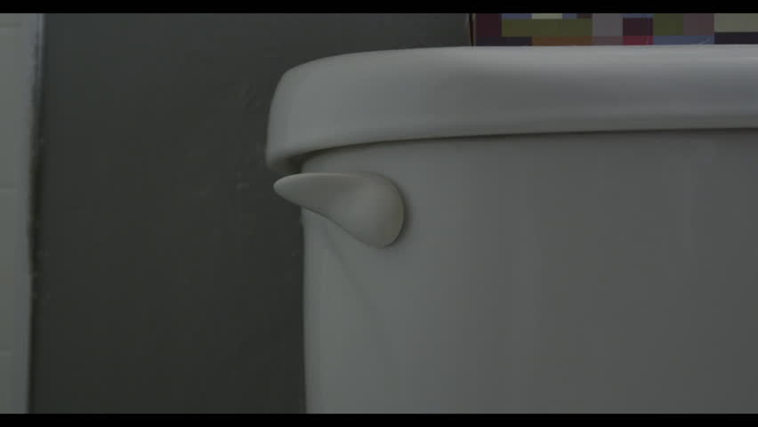 Handle of toilet being flushed