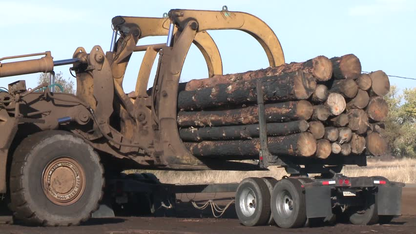 LUMBER MILL LOGGING TIMBER AND TREES FACILITY WITH HEAVY EQUIPMENT TRUCKS LOADERS AND PICKERS STOCK VIDEO FOOTAGE HD HIGH DEFINITION 1080 1920X1080 | Shutterstock HD Video #5743181