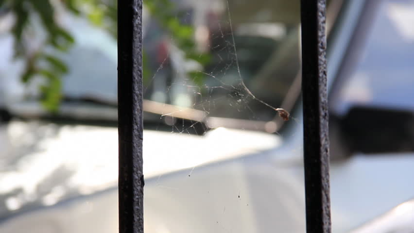Dilapidated spider web between two metal rods on car background #5903603