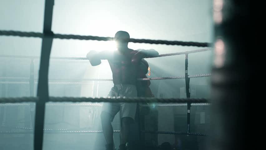 fight videos hd