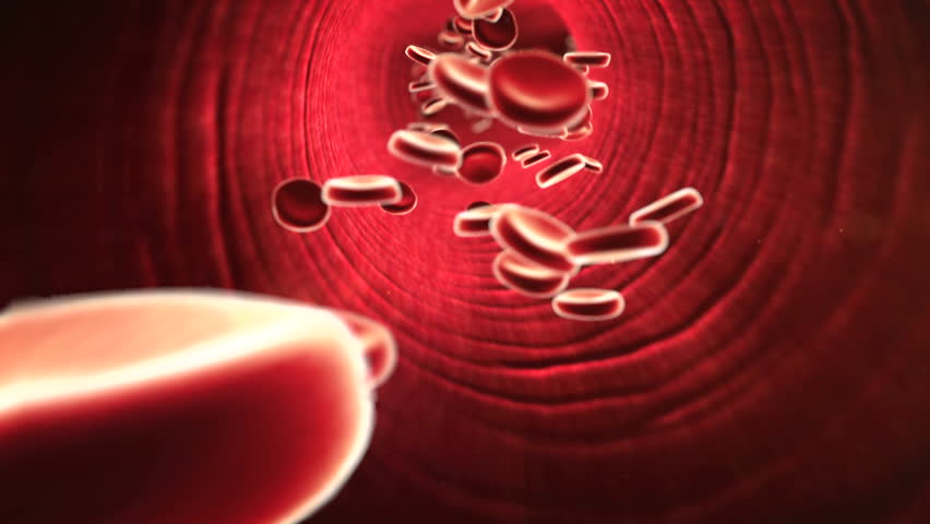 a blood clot in the vessels, fat cell in the blood, inside the blood vessel, High quality 3d render of blood cells, cholesterol in a blood