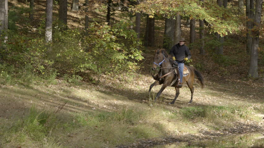 A cowboy rides a galloping horse in an open field, in slow motion