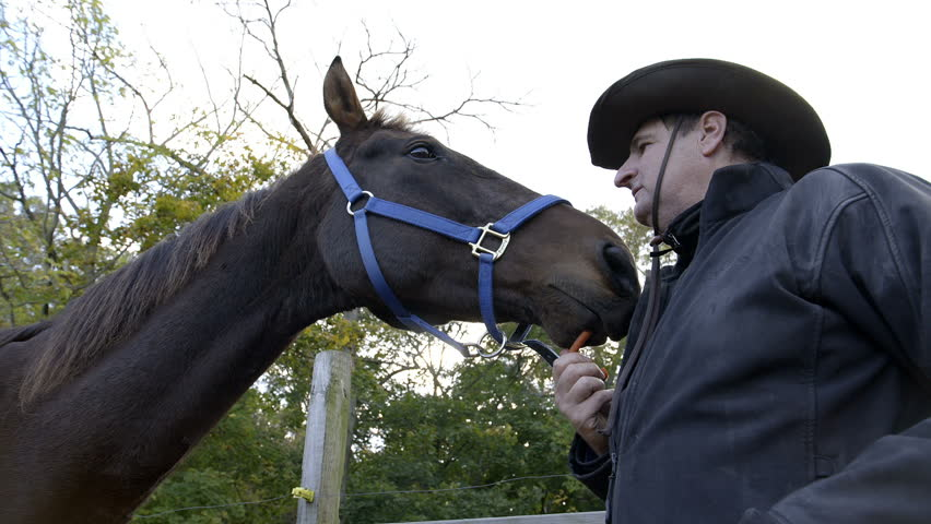 Close up shot of a man feeding carrots to his horse, in slow motion