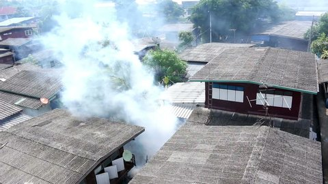 Fumigation,   Fumigate mosquito-killing to prevent disease