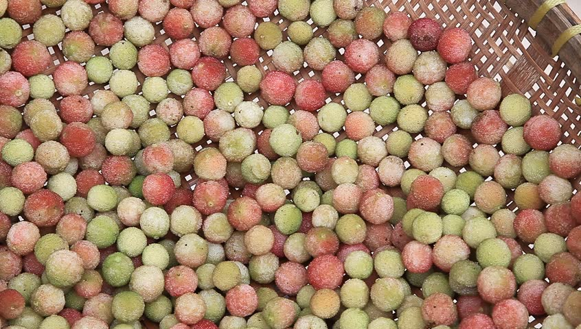 Header of waxberry