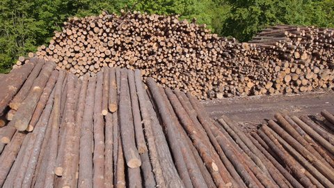 AERIAL: Large stack of lumber at the forest edge