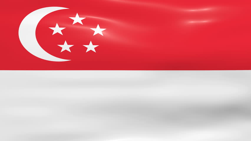 Image result for singapore flag