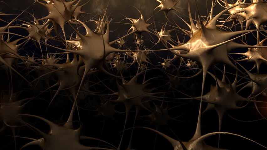 Human Neurons with flashes in connections