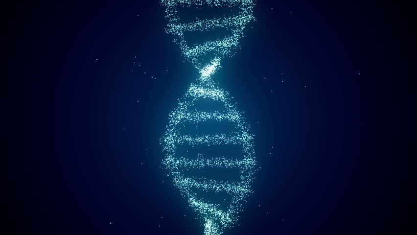 From Dna to Human figure Dark Blue | Shutterstock HD Video #7818133
