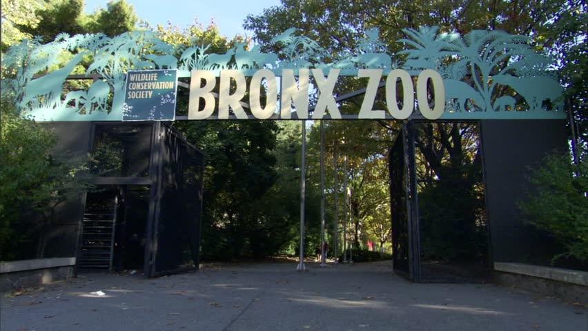 Visitors entering and exiting the Bronx Zoo at a gated entrance under a large Bronx Zoo sign,