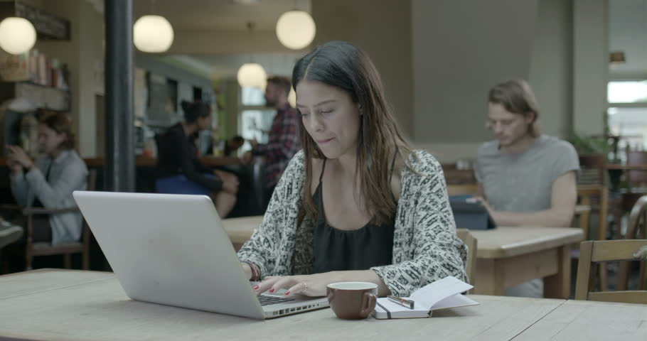 Woman working with laptop in pub   Shutterstock HD Video #8044414