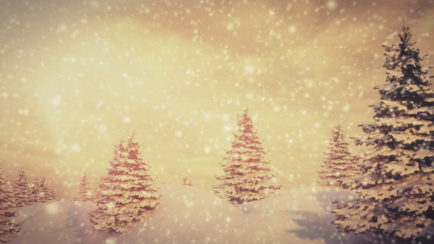 Christmas Trees and snow in golden light. Seamless loop | Shutterstock HD Video #8134999