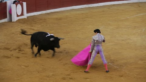 La Linea de la Concepcion, Spain - 19 July 2013: Traditional Spanish bullfighting.