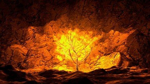 A Burning Bush