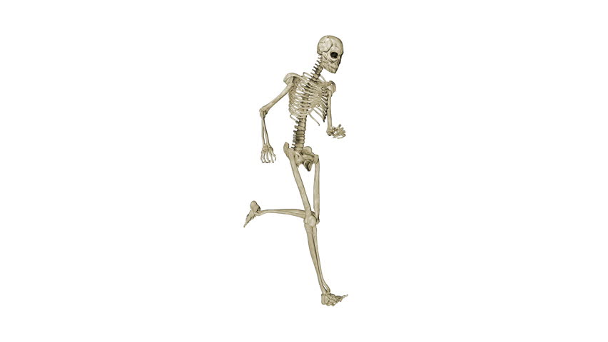 гифка скелет ползет по тротуару