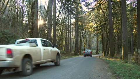 Two pick up trucks driving down forest road in Oregon.