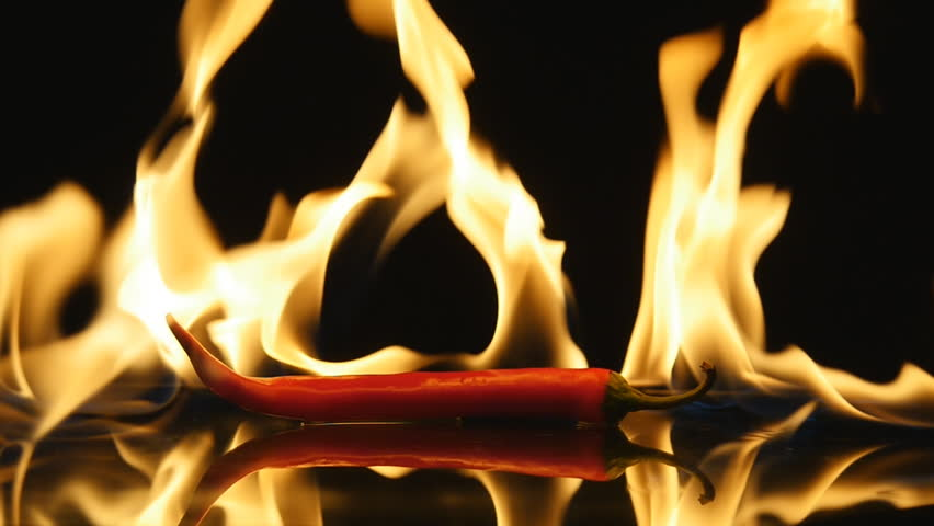 Burning hot Chili pepper with flame on black mirror background