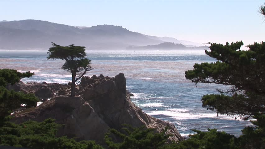 Lone Cypress in Monterrey Bay