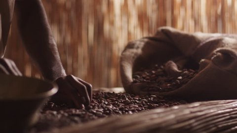 African Worker Is Sorting Cacao Beans. Shot on RED Cinema Camera in 4K (UHD).
