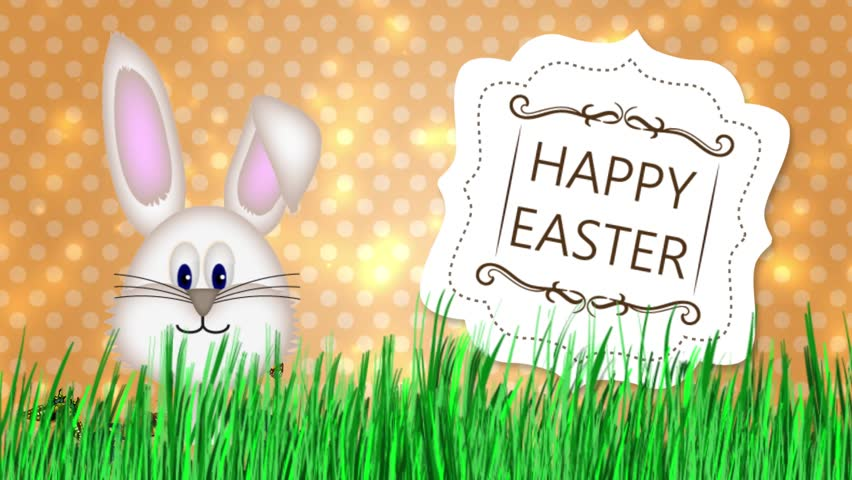 Happy Easter - Easter Bunny Video Animation  - HD stock video clip