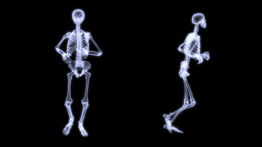 three dimensional rendering illustration, radiography of a human, Skeleton