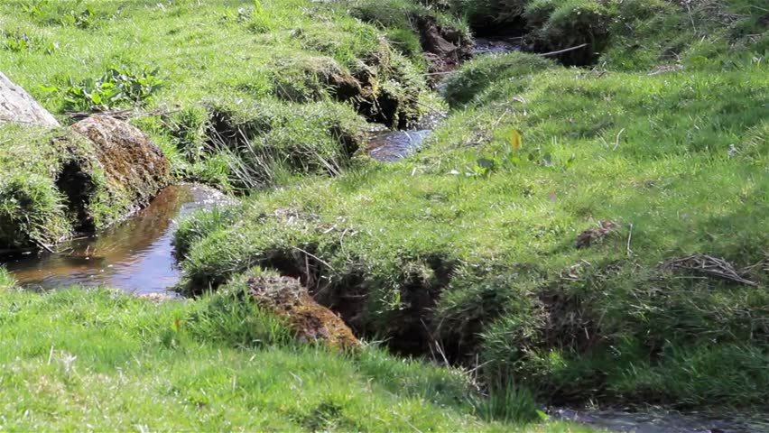 Stream water flows in Countryside Field Close Up - Beautiful English Countryside Nature Backgrounds  Location: Weaver Hills, Derbyshire, United Kingdom  Source: Canon 5D Mkiii  Date:6 Mar 2015 | Shutterstock HD Video #9617777