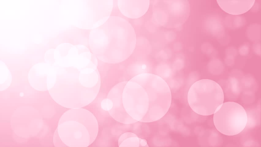 abstract pink animation background elegant holiday