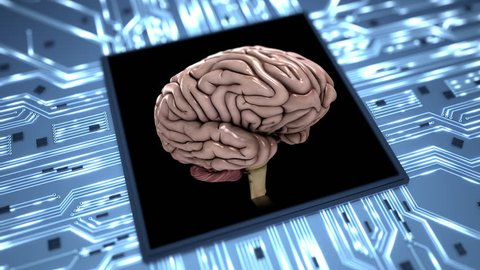 Brain on a chip loop dynamic Conceptual animation showing the simulation of the human brain. Seamless loop.