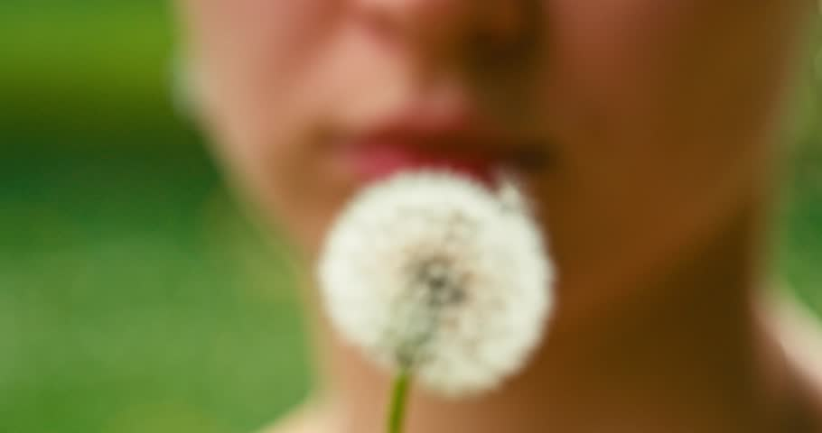 Slow motion of Dandelion being blown by a young smiling woman. Filmed in 4K DCi resolution 120 fps. Dandelion seeds are being blown by a woman on a green background. Close up. | Shutterstock HD Video #9899633